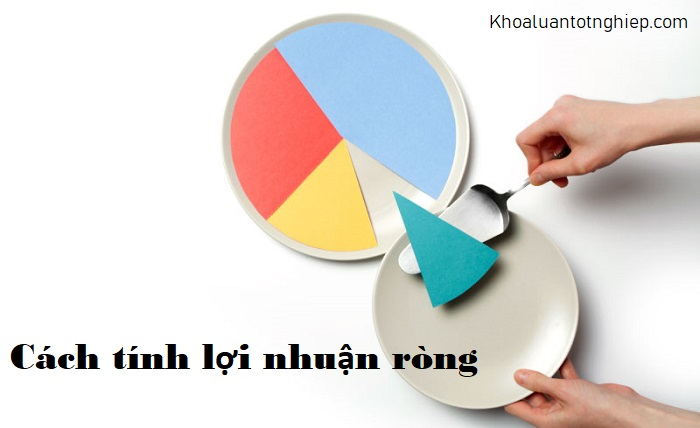 hinh-anh-loi-nhuan-rong-la-gi-3
